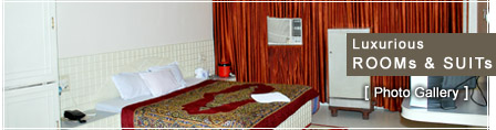 Hotel Center Point the best Hotel in Korba